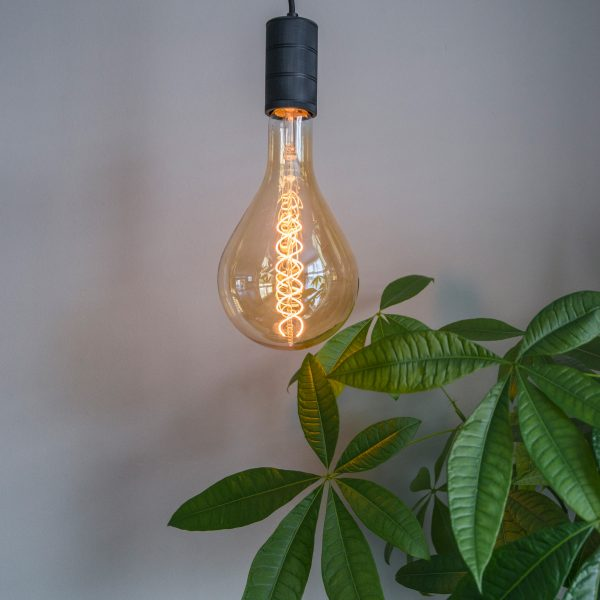 calex lampen giant lamp verlichting woonkamer pachira pale jade green le noir en blanc