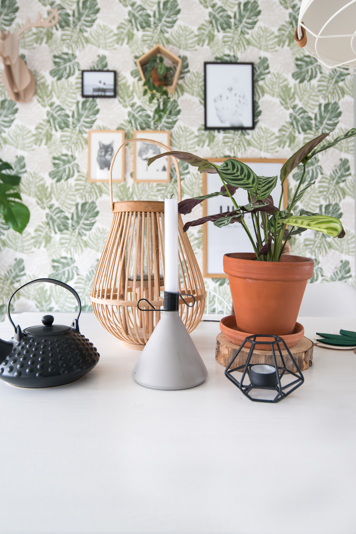 puikdesign conic kaarsenhouder candleholder betonlook concrete botanical wallpaper plants interior green