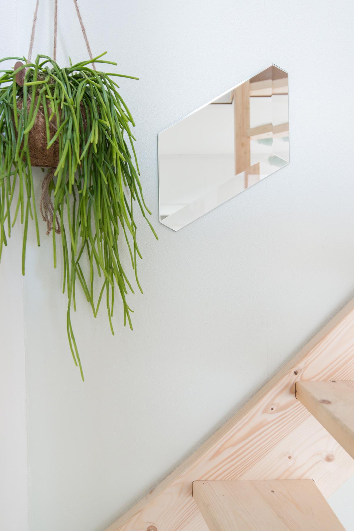 puikdesign facett spiegel mirror plants hangplant hallway