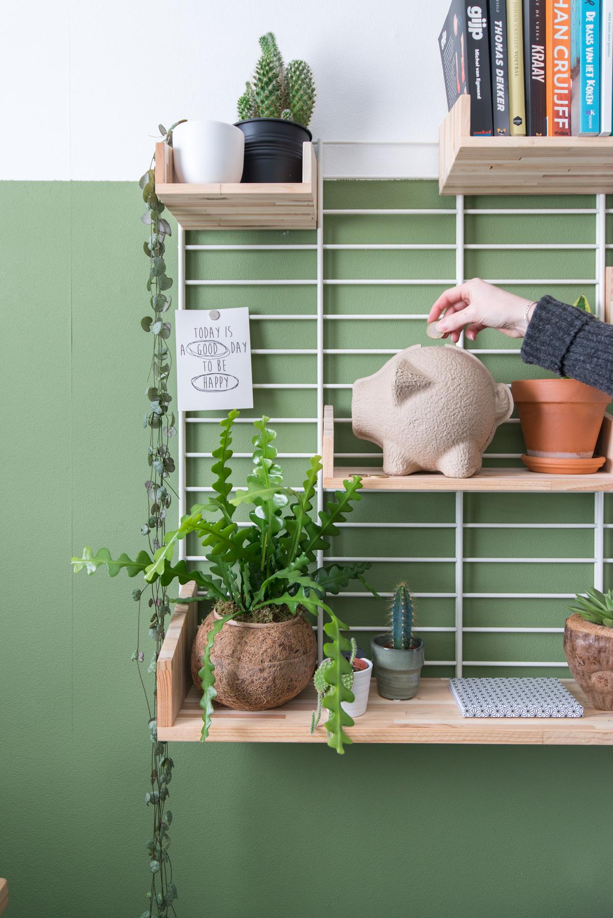 puikdesign tammy spaarpot papiermache green interior homeoffice tolhuijs design fency planten zaagcactus