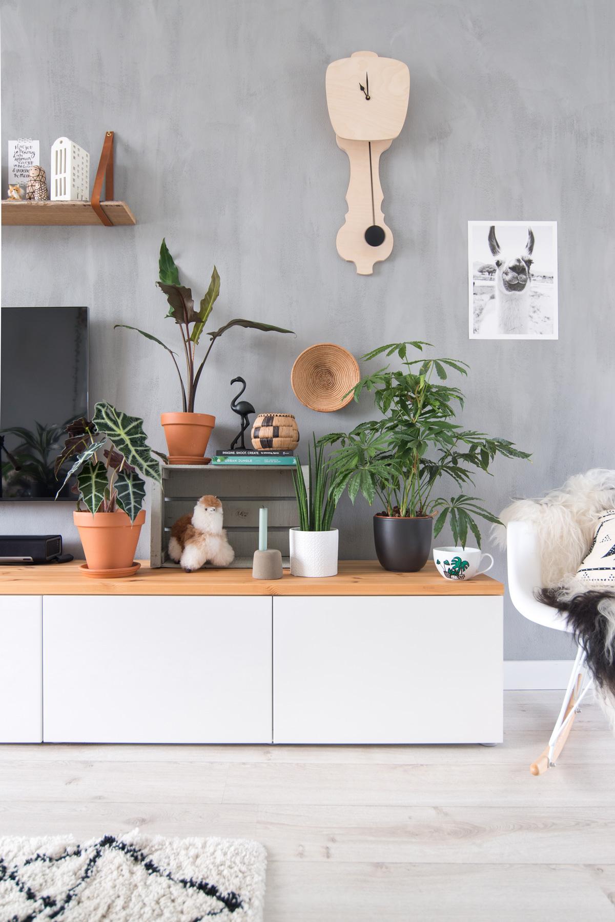 keeelly91blog urbanjungle intratuin planten groen in huis groenevingers interieur houseplant green woonkamer