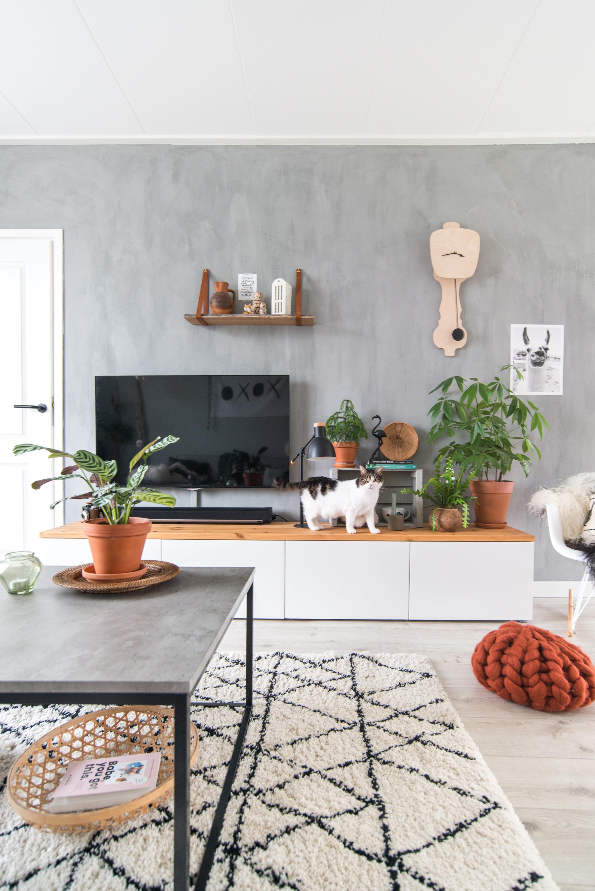 keeelly91blog wonen pureandoriginal greywall interieur planten catlover plantlover woonkamer ikea besta tvmeubel industrial jysk